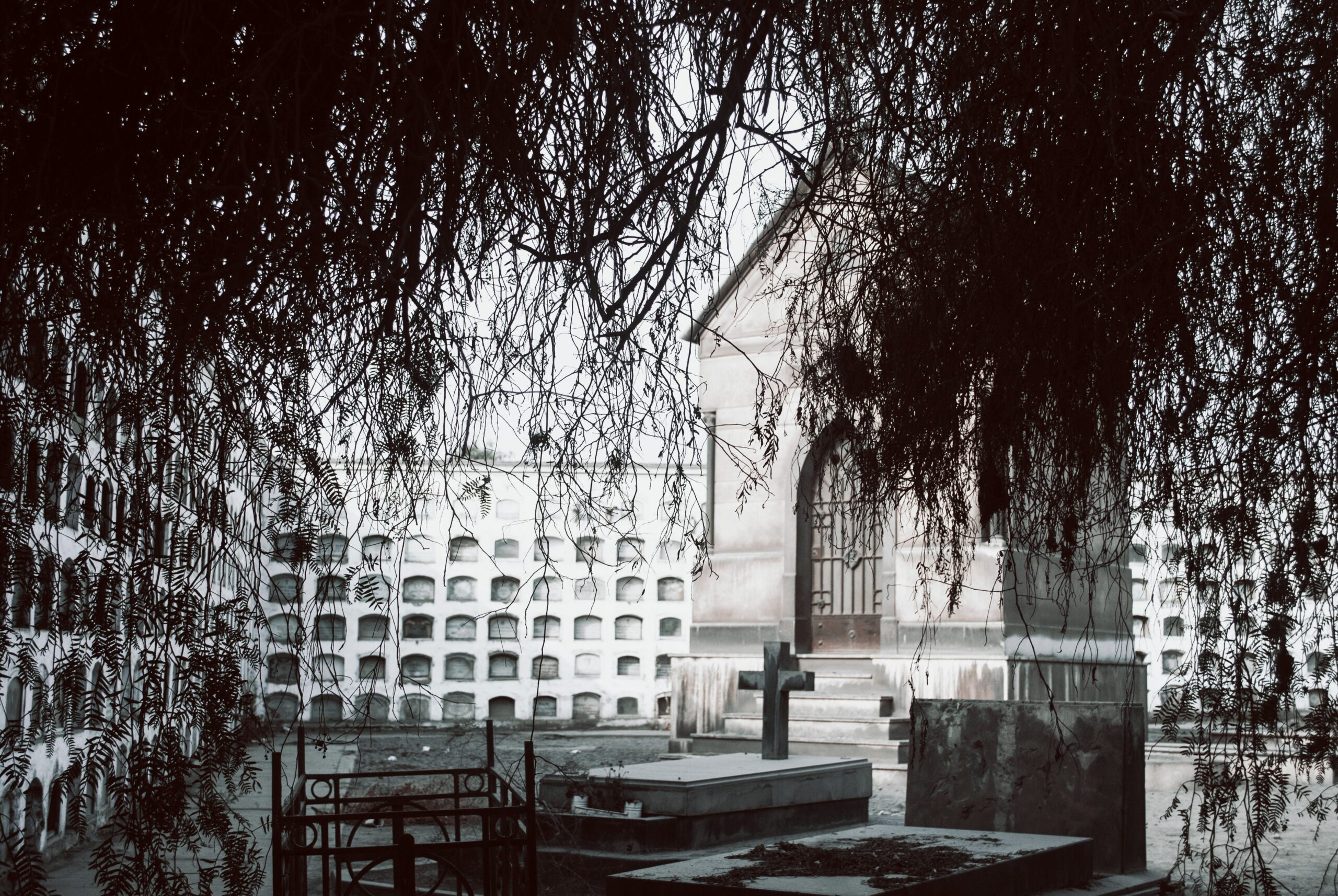 cementerio tercera edad